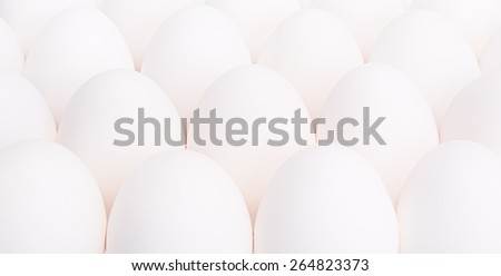 a lot of eggs on white background - stock photo