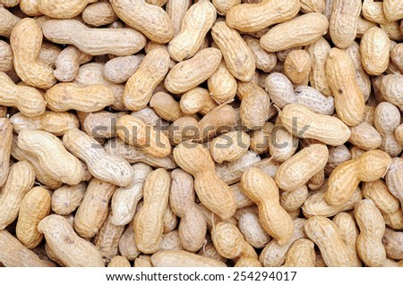 a lot of peanut for background  - stock photo