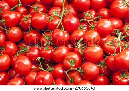 A lot of red ripe cherry tomatoes on the market on sunny day, close up - stock photo