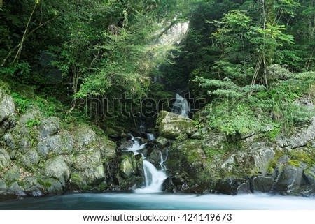 A lovely cascade flowing into a stream in a mysterious forest with sunlight shining through the lush greenery ~ River scenery of Taiwan in springtime - stock photo