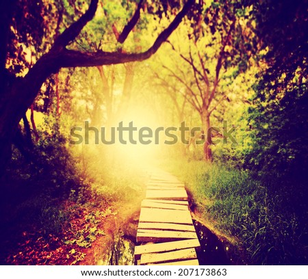 a magical bridge in a green lush forest toned with a retro vintage instagram filter  - stock photo