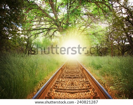 a magical path with train tracks in a lush green forest - stock photo