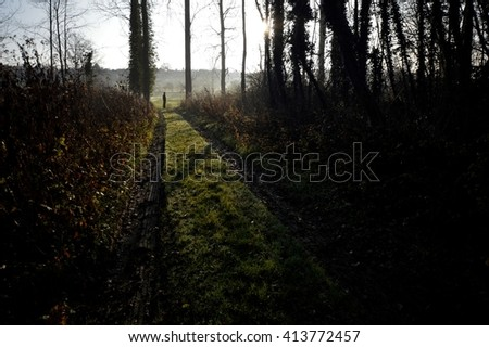 A man at the end of a forest road - stock photo