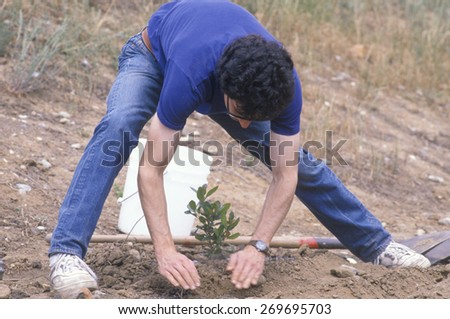 A man bending down and planting a small tree on Earth Day - stock photo