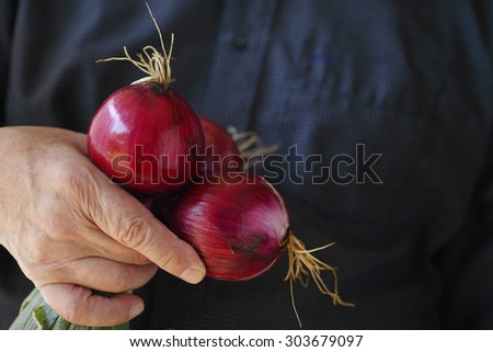 A man holds a bunch of freshly harvested and washed red onions, copy space included - stock photo