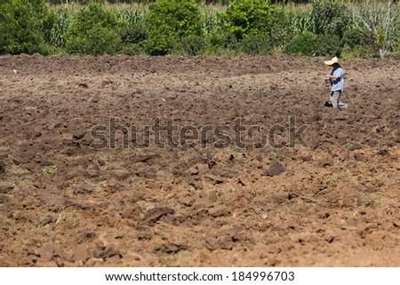 A man seeding in the farm. - stock photo