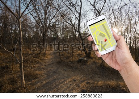 A man using Smartphone with a GPS map to find the way out of Forest. - stock photo