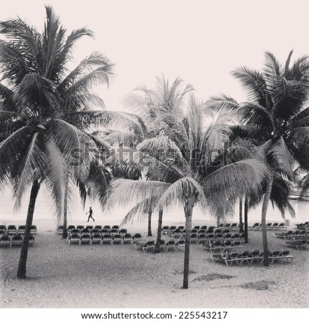 A man walking down the beach with empty lounge chairs and palm trees in the foreground. - stock photo