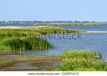 A marshy area inside Quivira National Wildlife Refuge in Kansas - stock photo