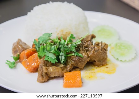 A meal of white rice and stew on a white plate - stock photo