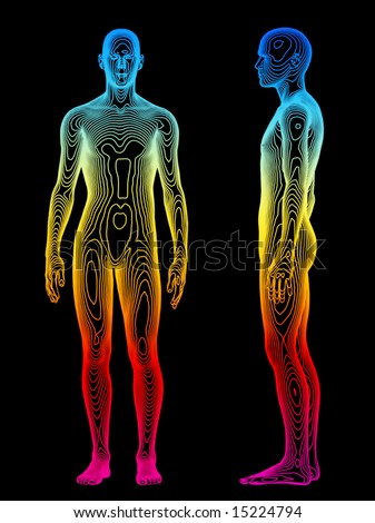 A medical concept of the human body - stock photo