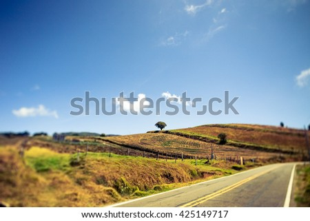 A midday landscape on the road to the Irazú volcano in Costa Rica. Please note that image was taken with Tilt Shift lens. - stock photo