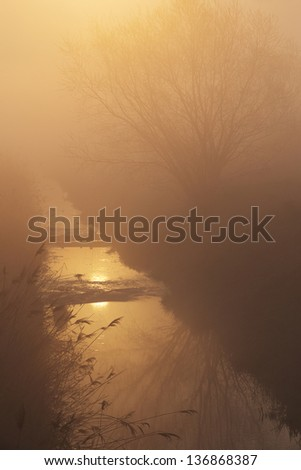 A mist over river in the glow of the rising sun - stock photo