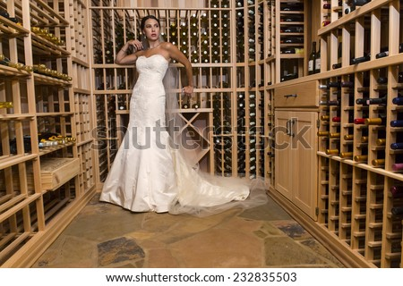 A modern bride poses indoors with available light - stock photo