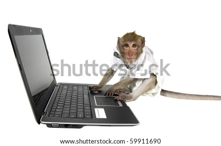 A monkey in a business suit sitting at a laptop - stock photo