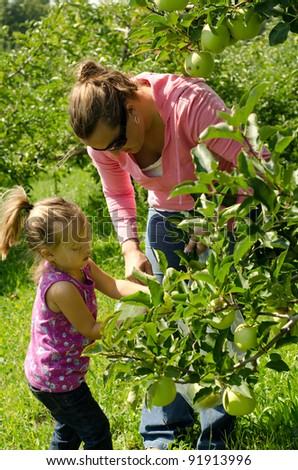 a mother and daughter picking green apples - stock photo