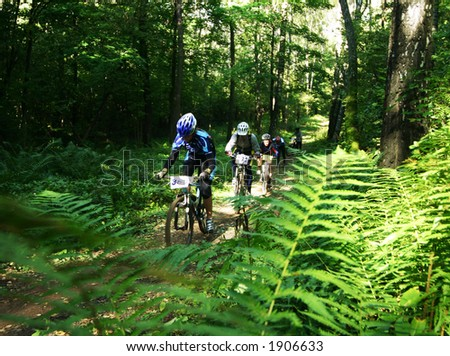a mountain biker in a wood thicket - stock photo