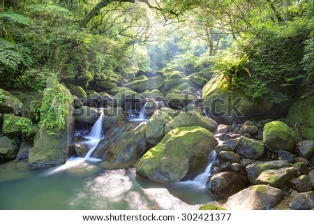A mysterious ravine of lush forest and cascades with sunlight shining through the lavish greenery - stock photo