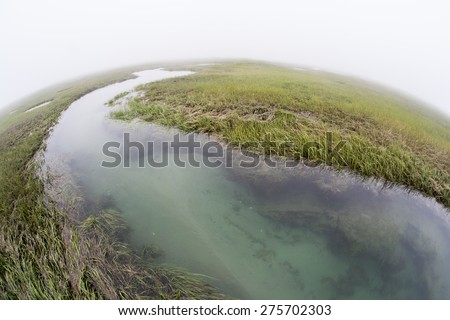 A narrow channel runs through a salt marsh in a shallow bay on Cape Cod, Massachusetts. Marshes are vital to the environmental health of this region. They are habitat for a diversity of life. - stock photo