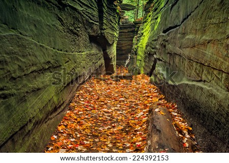 A narrow rock crevice with green walls and a floor covered with autumn leaves in Ohio's Cuyahoga Valley National Park. - stock photo
