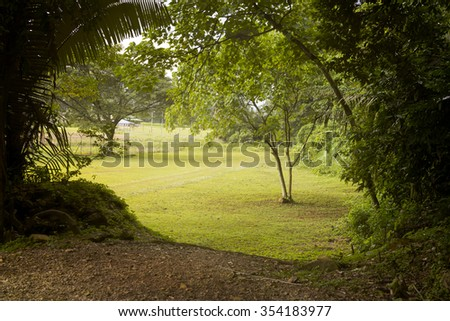 A natural hazy view of a tropical monsoon rainforest in the afternoon - stock photo