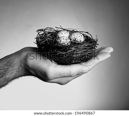 A nest with three eggs sitting in someone's hand. - stock photo
