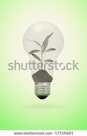 a new born plant in a light bulb - stock photo