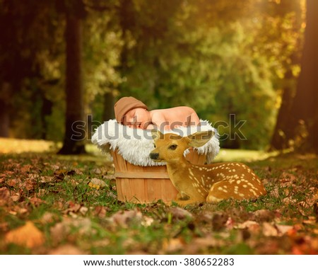 A newborn baby is sleeping in a basket in the park with a small deer fawn next to it for a friendship or love concept. - stock photo