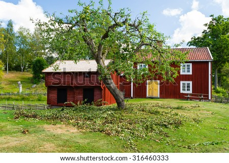A newly pruned apple tree with branches still on the ground. Lovely rural scene in background with red wooden farmhouses, fences and and some birches. Sustainable lifestyle at its best. - stock photo