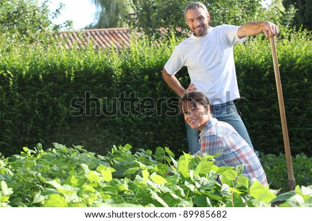 A nice couple gardening. - stock photo