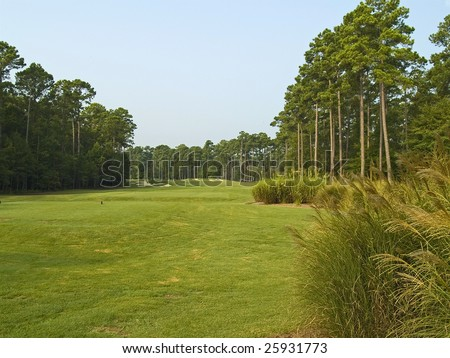 A nice wide view of this Myrtle Beach golf course. - stock photo