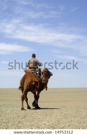 A nomadic herder riding his camel - stock photo