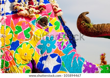 Painted Elephant Background a Painted Elephant at The