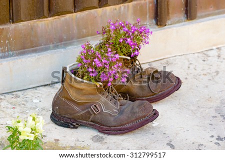 A pair of old used boots up cycled as flower pots with lovely purple flowers in them. Boots are worn and weathered with a lovely patina to them. Recycle at its best. - stock photo