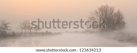 A panorama photo with geese flying away on a beautiful sunrise in early spring - stock photo