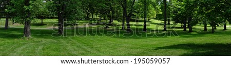 A panoramic view of beautiful park with lush green grass and trees.                          - stock photo