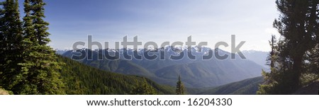 A panoramic view of Hurricane Ridge on a summer day in Olympic National Park - stock photo