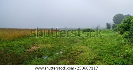 A panoramic view of this meadow on a foggy morning in Freehold New Jersey. - stock photo