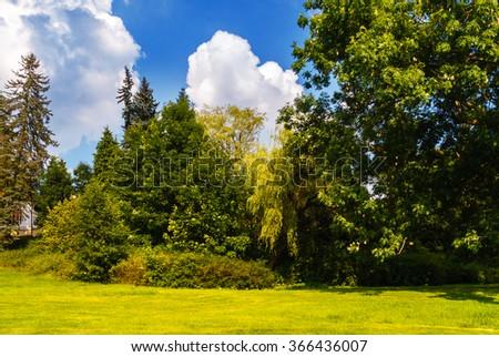 A park garden with blue sky - stock photo