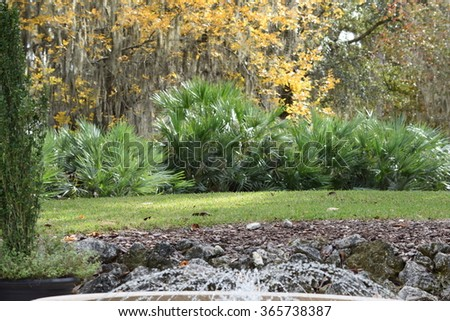 A park in Ocala, Florida know for Tranquility , Peace and Worship - stock photo