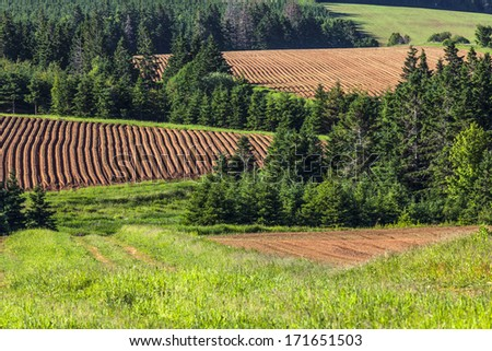 A patchwork of farm fields with hills and rows and freshly planted  potatoes in rural Prince Edward Island, Canada. - stock photo