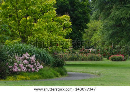 A path in lush green park with roses in the background. - stock photo