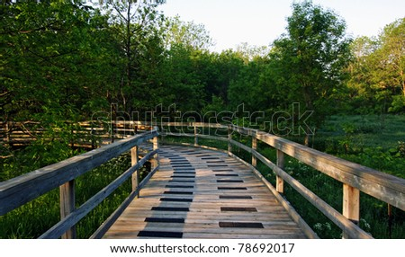 a path leading into an Ontario forest - stock photo
