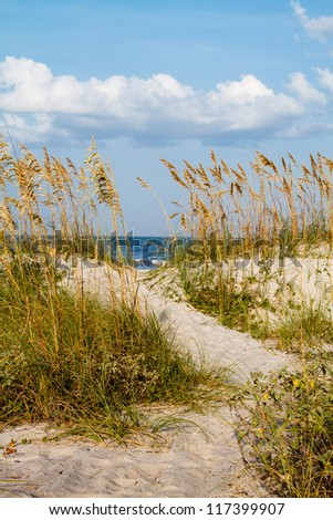 A pathway cuts through the dunes leading to the beach. - stock photo