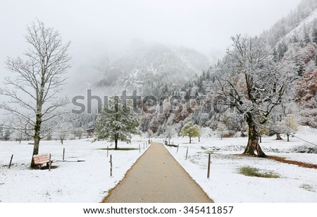 A pathway through the meadow with maple trees covered by first snow on a foggy gloomy morning by the mountainside ~ Beautiful snow autumn scenery of Karwendel Mountains in, Austria ~ European alps - stock photo