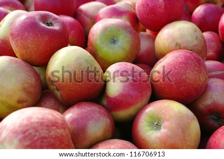 a photo a lot of red apples - stock photo