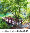 A photo of a small bridge in the forest - stock photo