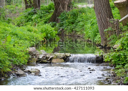 A photo of small river in early spring landscape with yellow flowers - stock photo