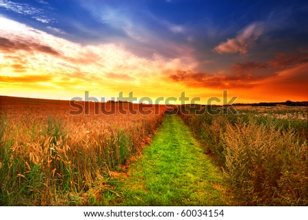 A photo of sunset in the countryside, Denmark - stock photo