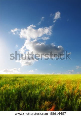 A photo of the countryside late afternoon - stock photo